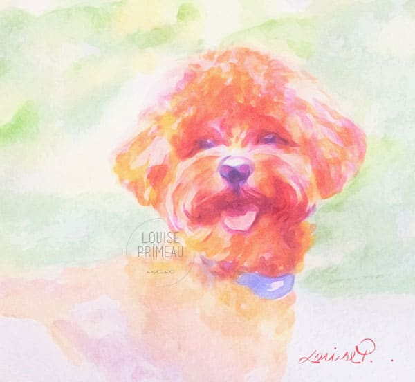 Sunny, watercolour pet portrait