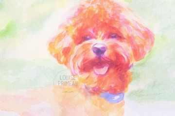 Sunny, watercolour pet portrait