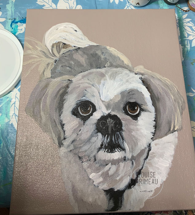 First pass of colour on pet portrait