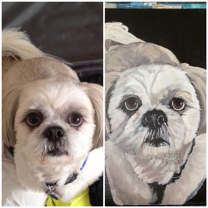 Comparison photograph