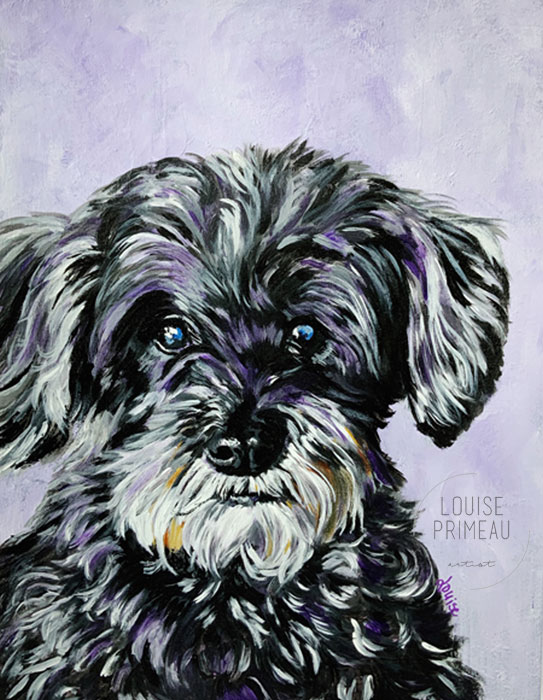 Shady, pet portrait of a Schnoodle, by Louise's ARTiculations.