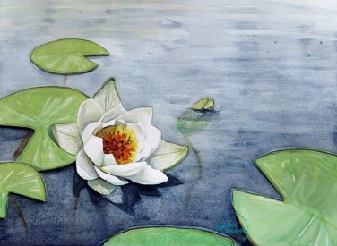 Evening of the Waterlilies, Soila Tuominen, guest artist at Louise's ARTiculations