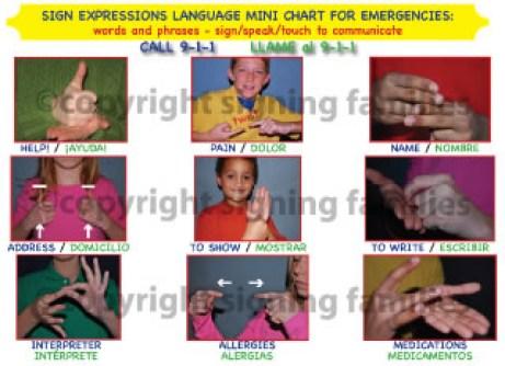 sign-expressions-mini-emergency-chart1