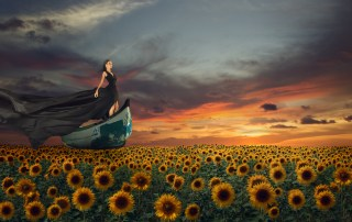 Launching my writing career: fantasy portrait of young magnificent woman in long black dress flying on boat over sunflowers field at sunset time
