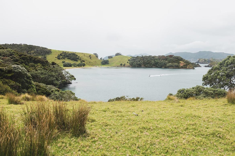 Bay of Island - Motorua Island