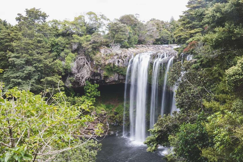 Rainbow falls - Kerikeri