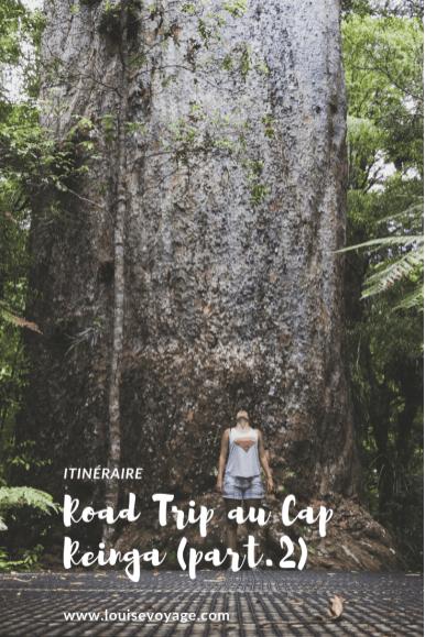 Road trip cap reinga (part2)
