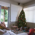 Passer Noël seule en Nouvelle Zélande !