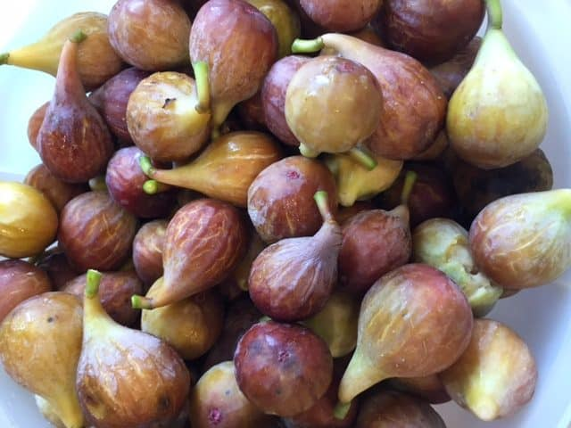 Bowl of fresh figs for fig cake.