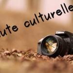 Minute culturelle #8 : Chartres