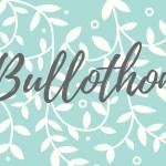 Bullothon #4