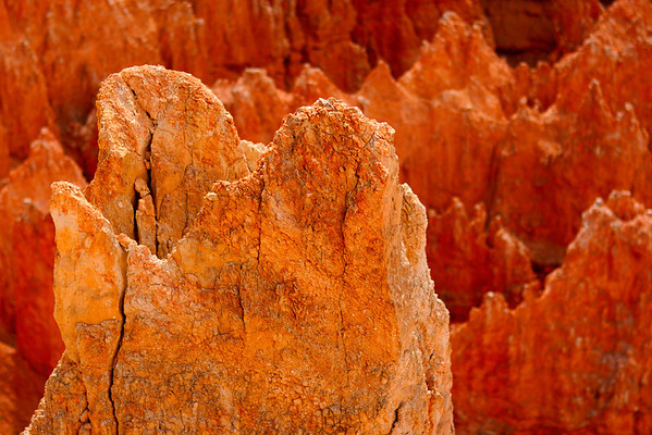 Detail of the edges of Bryce Canyon National Park