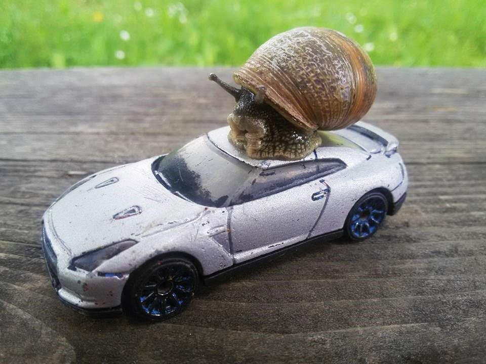 Escargot sur Nissan GTR