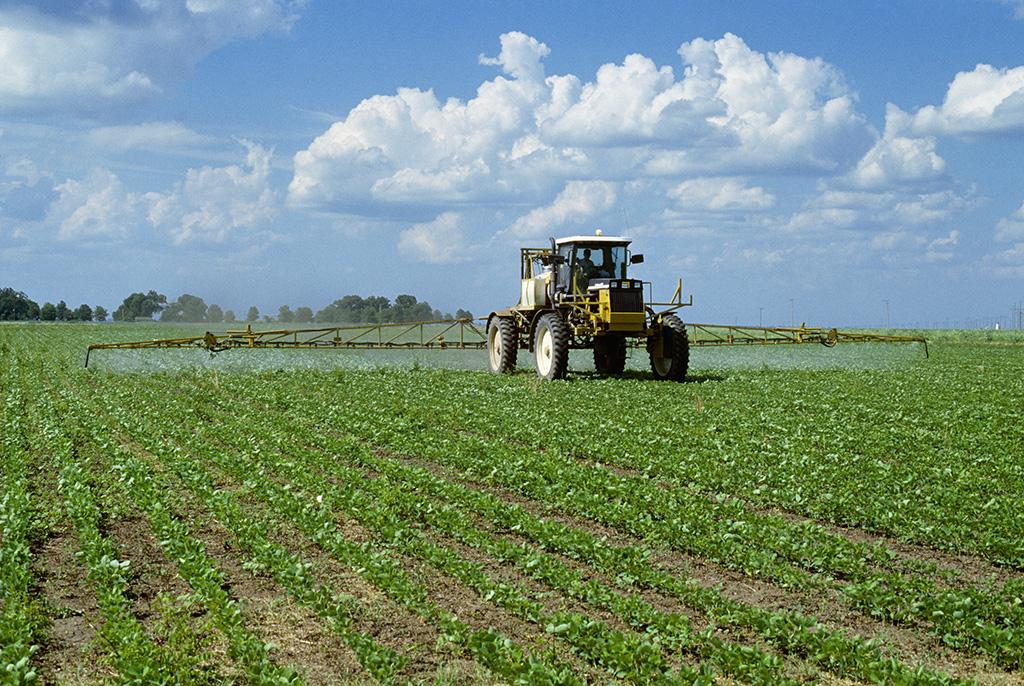 Statistikaamet: Rohkem kui viiendik Eesti põllumaast on mahe