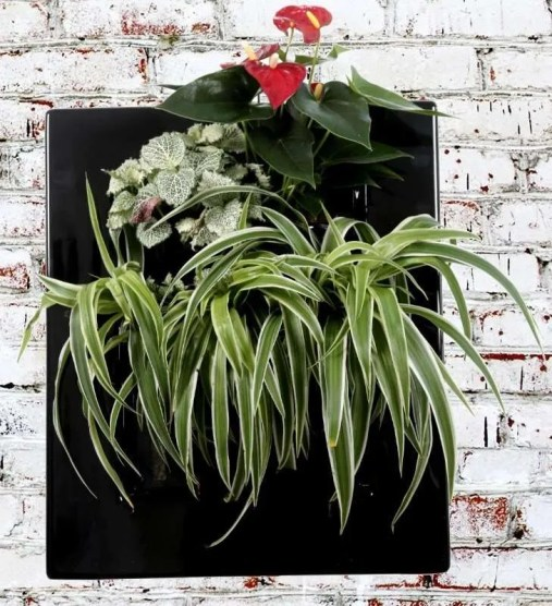 BV310 Easy Dark vegetal picture frame green decor
