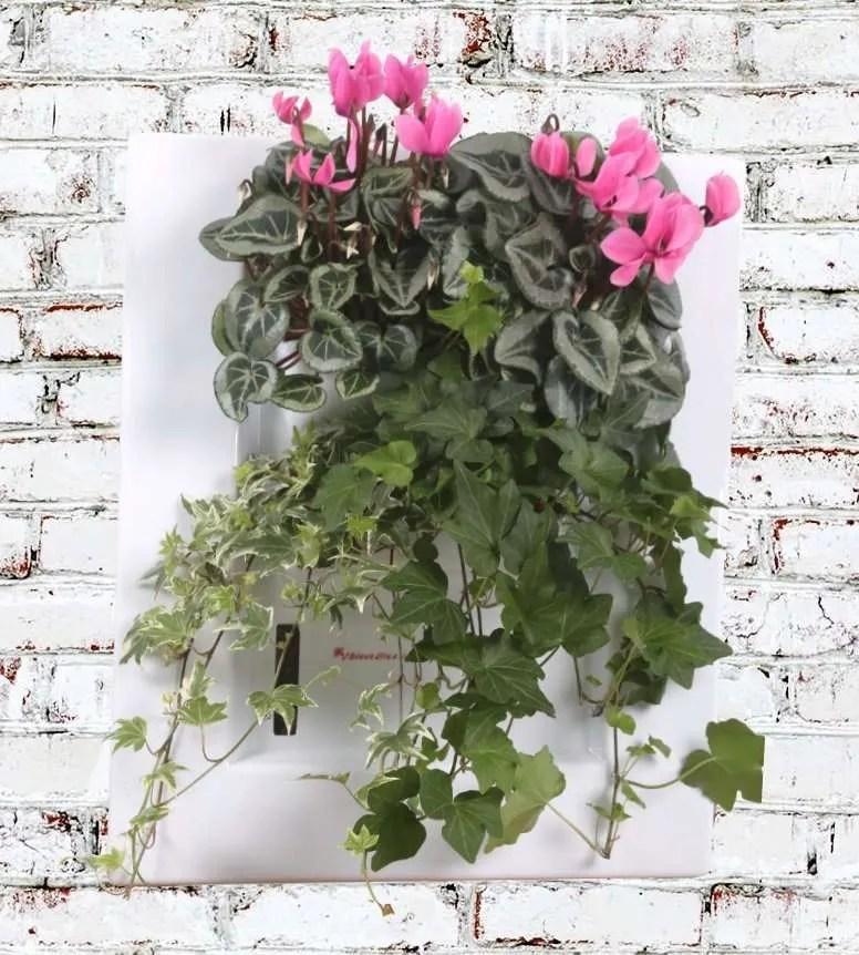 Biovertigo Easy White hanging planters