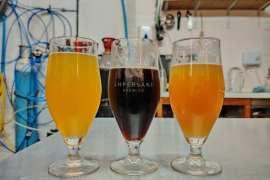 Czy można napić się piwa zdalnie?Warszawski Festiwal Piwa Bez Granic