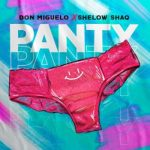 Don Miguelo Ft Shelow Shaq – Panty