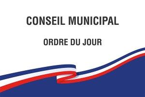 Ordre du jour du Conseil municipal de Lourdes