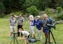 Parc national : Candidature ouverte pour un Service civique au Parc national – secteur du val d'Azun