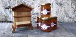 Château fort – Musée Pyrénéen de Lourdes, les abeilles grandes gagnantes du confinement ?