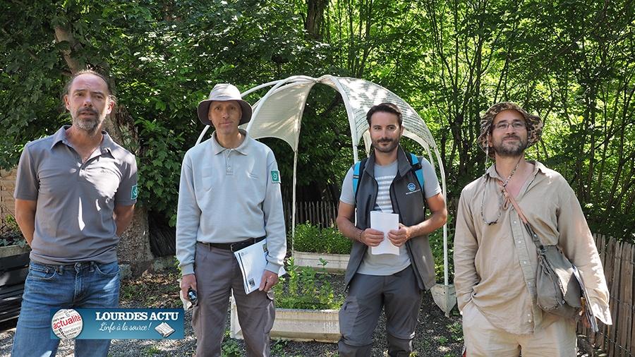 Programme d'éradication de la Berce du Caucase sur le secteur de Cauterets