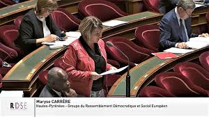 Read more about the article La Sénatrice Maryse CARRÈRE alerte le Gouvernement sur la situation des saisonniers