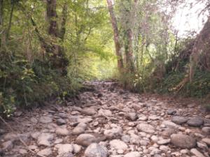 Des Associations environnementales menacées suite au problème de l'irrigation en Adour