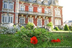 Read more about the article Lourdes : Récupération de plantes