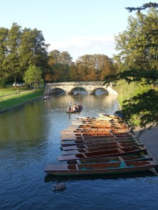 A spot of punting