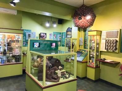 Érico chocolate shop and museum