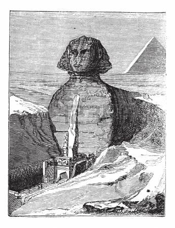 13772303-grand-sphinx-de-gizeh--gizeh-en-egypte-au-cours-des-ann-es-1890-la-gravure-de-cru-vieux-illustration