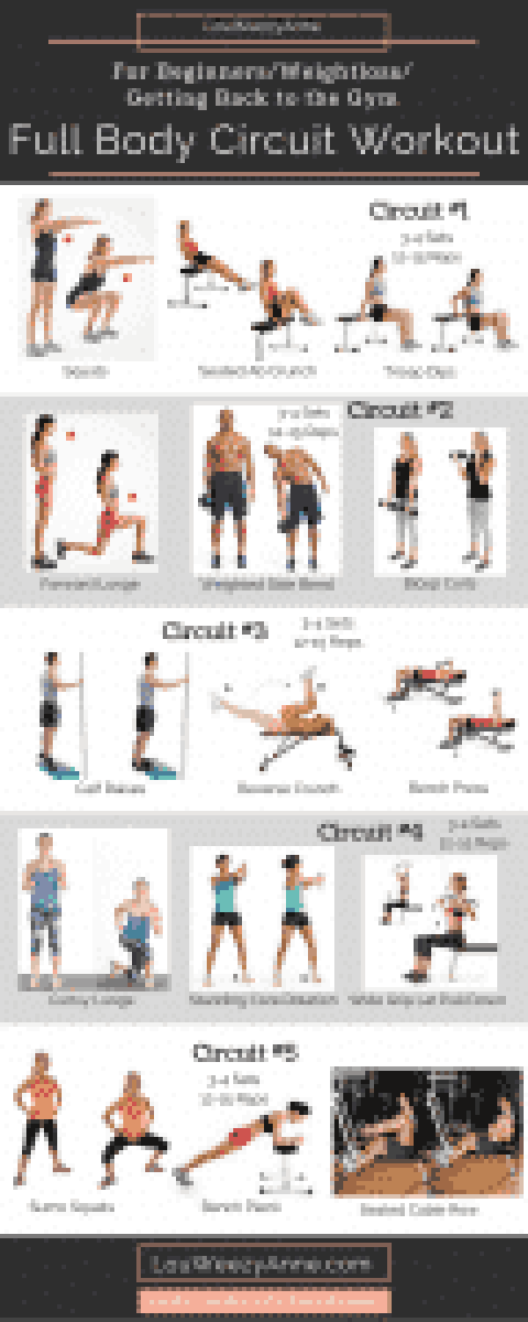 Full Body Workout_For Beginners