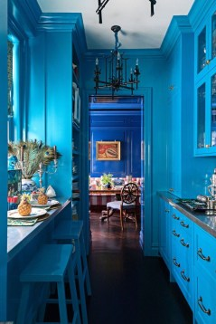 Cool Blue Kitchens Ideas For Inspiration 10