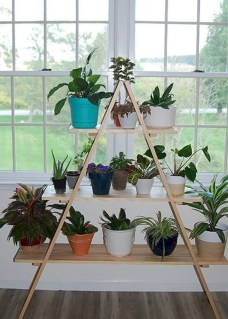 Popular Indoor Plant Stands Ideas For Fresh Home Inspiration 13