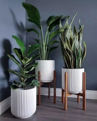 Popular Indoor Plant Stands Ideas For Fresh Home Inspiration 24