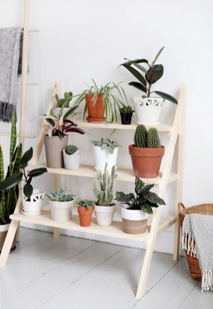 Popular Indoor Plant Stands Ideas For Fresh Home Inspiration 34