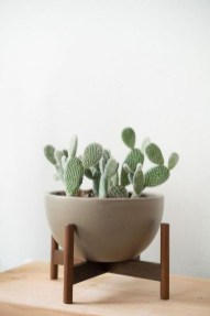 Popular Indoor Plant Stands Ideas For Fresh Home Inspiration 50