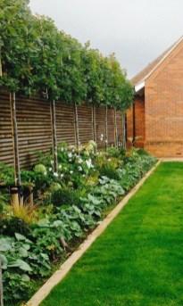Marvelous Garden Border Ideas To Dress Up Your Landscape Edging 38