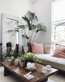 Pretty House Plants Ideas For Living Room Decoration 01