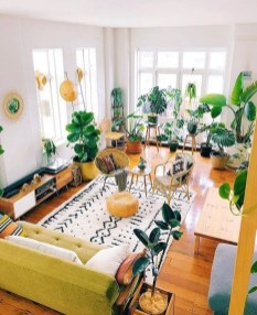 Pretty House Plants Ideas For Living Room Decoration 03