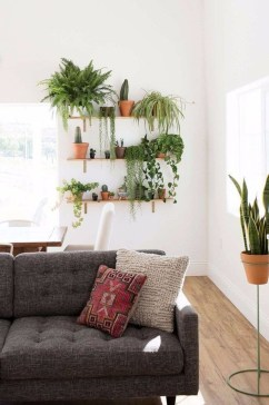 Pretty House Plants Ideas For Living Room Decoration 27