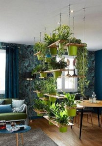 Pretty House Plants Ideas For Living Room Decoration 31