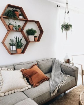 Pretty House Plants Ideas For Living Room Decoration 34