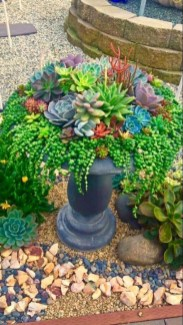 Awesome Succulent Garden Ideas In Your Backyard 03