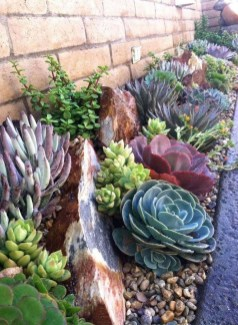 Awesome Succulent Garden Ideas In Your Backyard 04