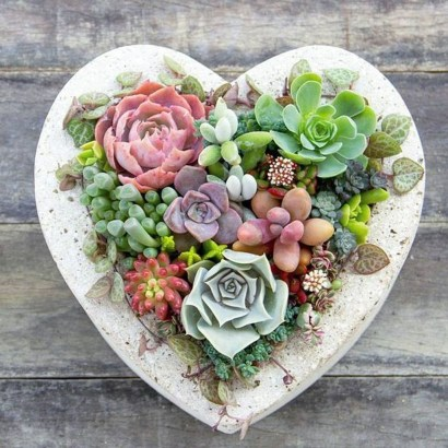 Awesome Succulent Garden Ideas In Your Backyard 35