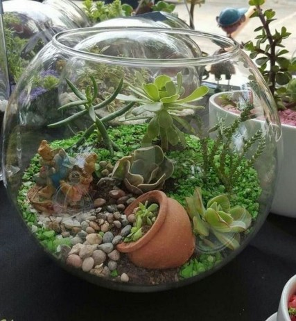 Awesome Succulent Garden Ideas In Your Backyard 37