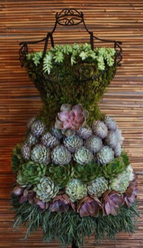 Awesome Succulent Garden Ideas In Your Backyard 50