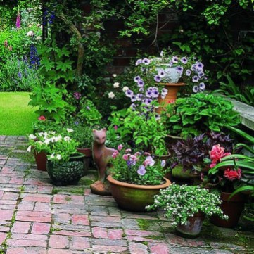 Fascinating Cottage Garden Ideas To Create Cozy Private Spot 45